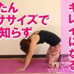 【動画付】腰痛予防解消に!猫のポーズ・猫の振り向きのポーズ