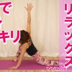 【動画付】股関節・全身を伸ばす!トカゲの伸びのポーズ