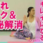 【動画付】内臓脂肪を刺激する半魚王のポーズ